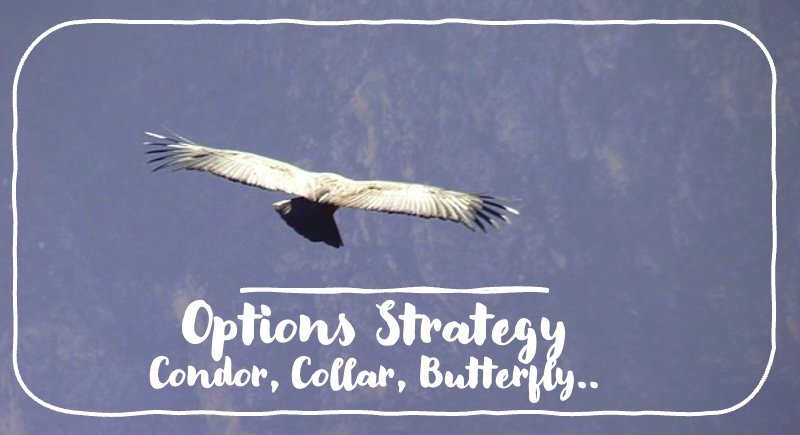 options strategy comprehensive list